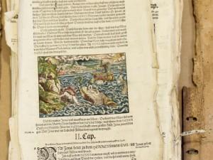Slyder-2013-4-Bibel