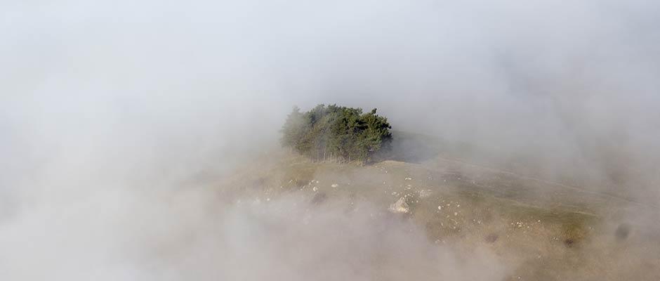 Slyder-Herbst-Nebel-IMG_0057